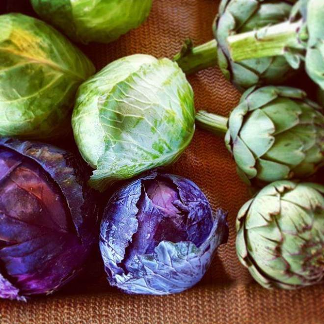 whole cabbage and artichokes