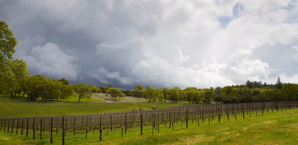 The Sierra Foothills Wine Country Passport: Your Key to a Great Getaway!