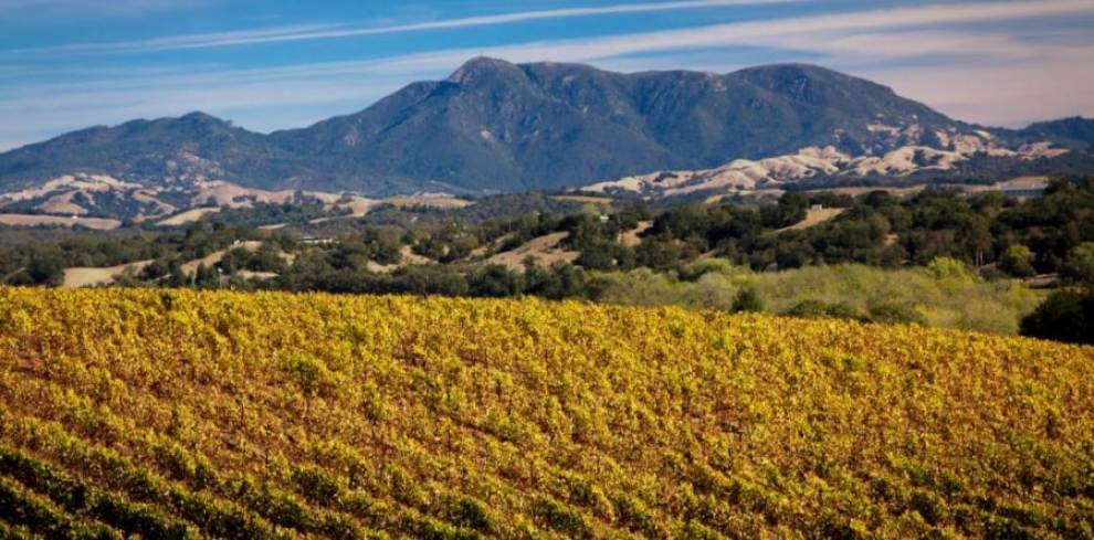 How to Have an Unforgettable Tour of the Sierra Foothills Wine Country